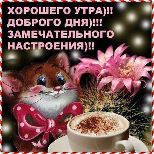 Открытки настроение доброго утра удачного дня 65