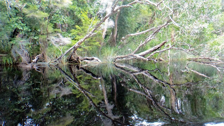 Нуса Эверглейдс, Австралия