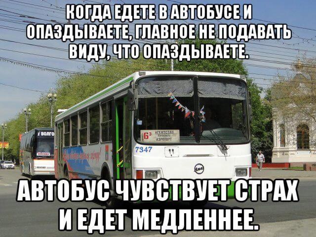 Фото, смешные надписи с картинками из автобуса