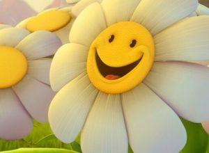 Прикольные смешные картинки для поднятия настроения