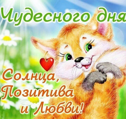 https://pozitiv365.ru/wp-content/uploads/2018/04/dobroe-utro-lubimaya63.jpg