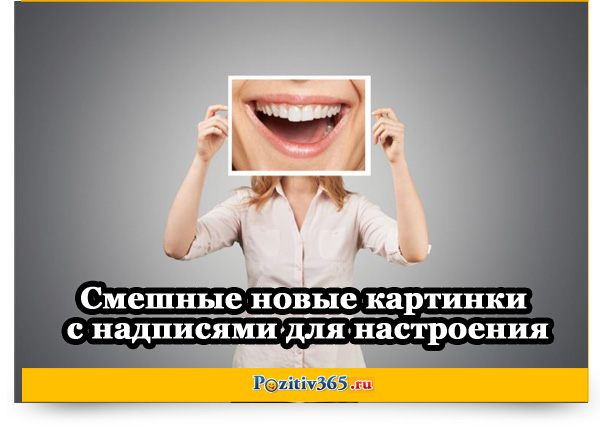 Смешные новые картинки с надписями для настроения