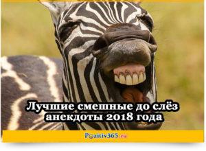 Лучшие смешные до слёз анекдоты 2018 года