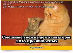 Смешные свежие демотиваторы 2018 про животных