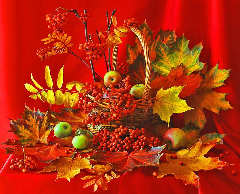 Открытки в картинках осень