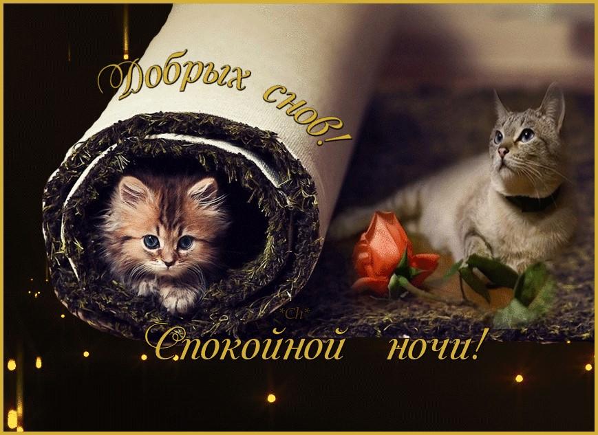 Хорошая открытка доброй ночи